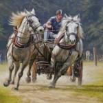 Somerely - Horsepower