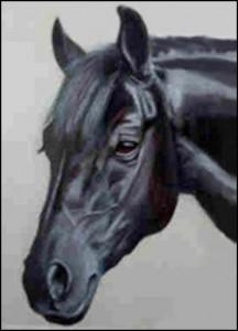 gs_blackhorse_web