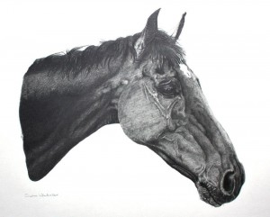 Sophie Whitaker Harry-A4-Pencil