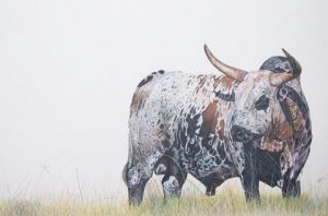 Caryn Fisher Bull