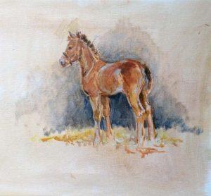 Study of Foal, Woburn Stud