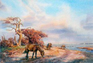 The Solent Shore