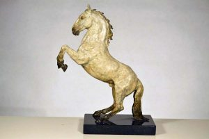 Spanish Horse Rearing