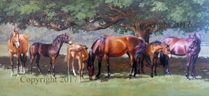 Mares and Foals II